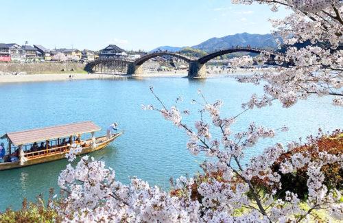 春の遊覧船「さくら舟」
